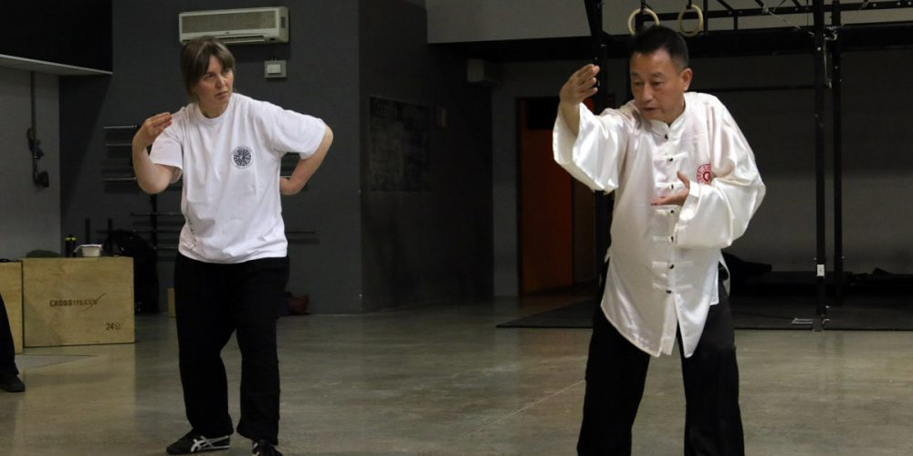 Summer Ba Gua Zhang seminar in Bologna, 21-22 July